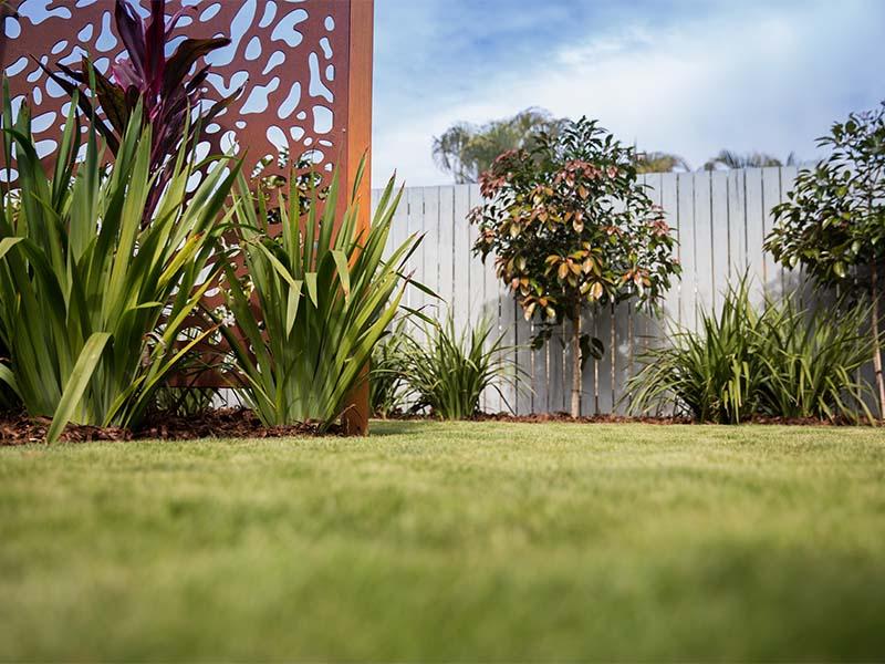 Vertical Garden and Other Garden