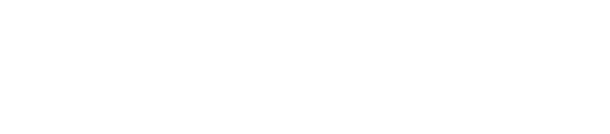 Brizscapes 2021 Logo White