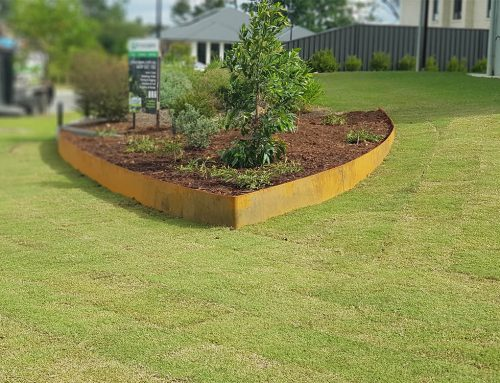 The Cost Of Quality Landscaping Services In Brisbane, Australia